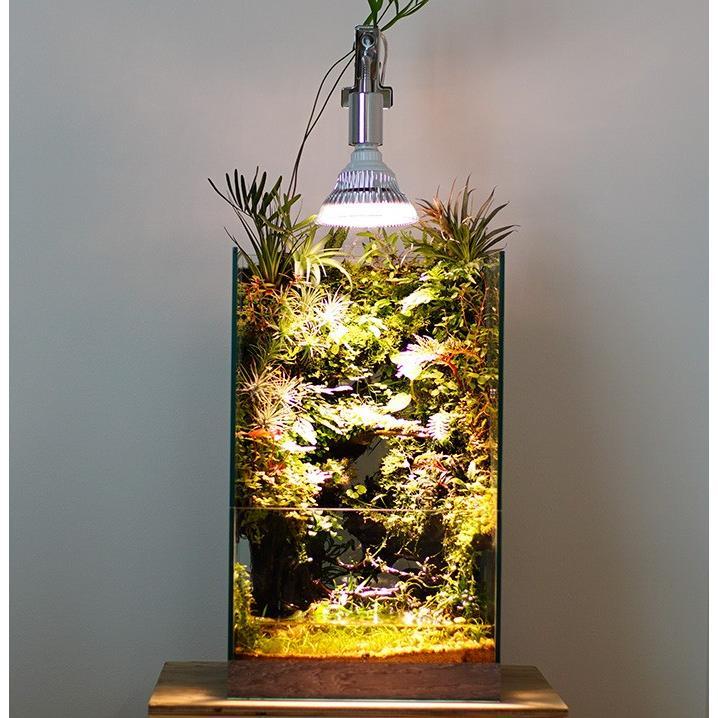 植物育成LED PlantLight18W 白色クリップタイプ(SUN-18W)+(プラントクリップA)観葉植物 植物栽培ライト|shopbarrel|07
