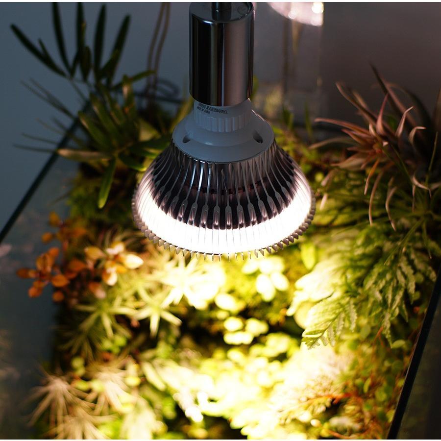 植物育成LED PlantLight18W 白色クリップタイプ(SUN-18W)+(プラントクリップA)観葉植物 植物栽培ライト|shopbarrel|08