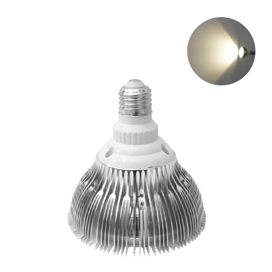 LED PlantLight 20W拡散光 植物育成使用白色電球 E26 観葉植物 水耕栽培 家庭菜園 水草栽培|shopbarrel