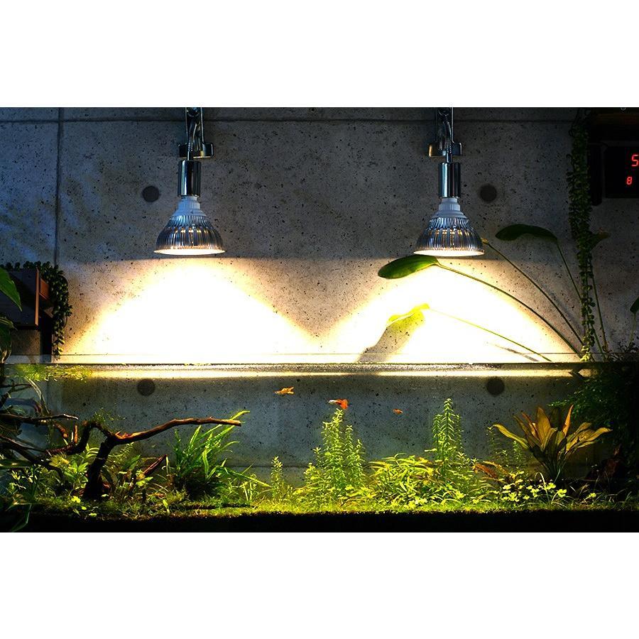 LED PlantLight 20W拡散光 植物育成使用白色電球 E26 観葉植物 水耕栽培 家庭菜園 水草栽培|shopbarrel|04