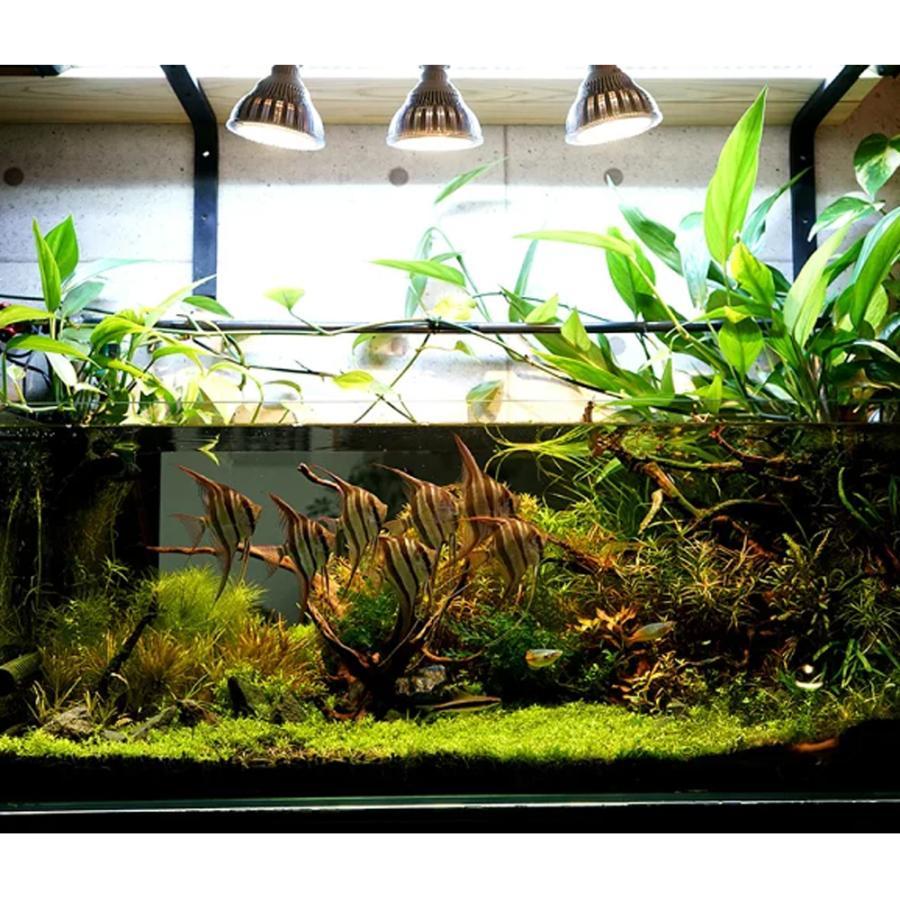 LED PlantLight 20W拡散光 植物育成使用白色電球 E26 観葉植物 水耕栽培 家庭菜園 水草栽培|shopbarrel|05