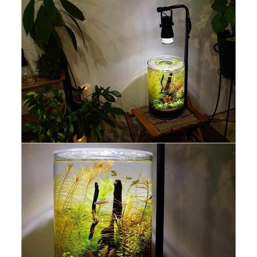 植物育成LED SUN-10W 白色電球 口径E26 +プラントクリップA(PlantLight10W)観葉植物 植物栽培ライト |shopbarrel|17