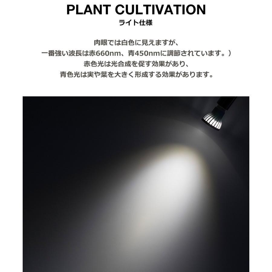 植物育成LED SUN-10W 白色電球 口径E26 +プラントクリップA(PlantLight10W)観葉植物 植物栽培ライト |shopbarrel|05
