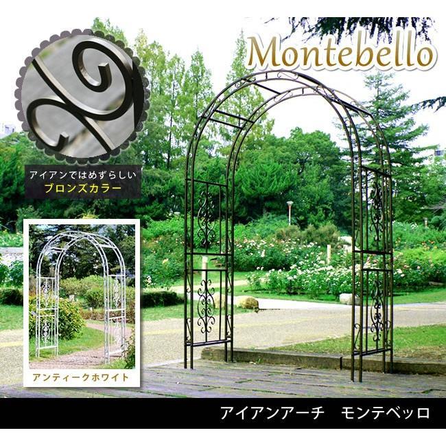 アイアンアーチ 庭 ガーデン