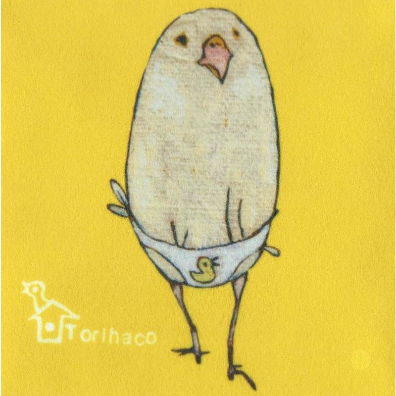 【Torihaco】 ボールペン [6] 【メール便対応】|shopfreddo|02