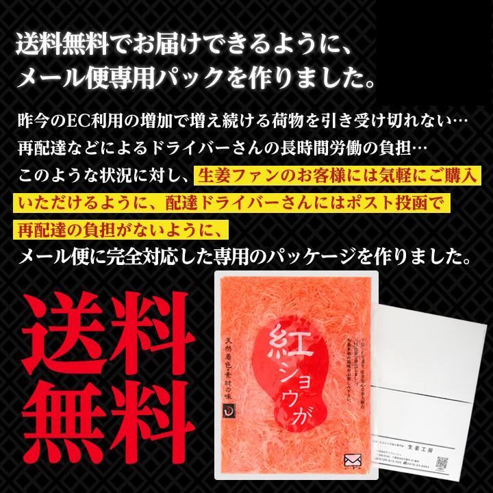 紅ショウガ 660g 1袋 ゆうパケット送料無料 shougakoubou 05