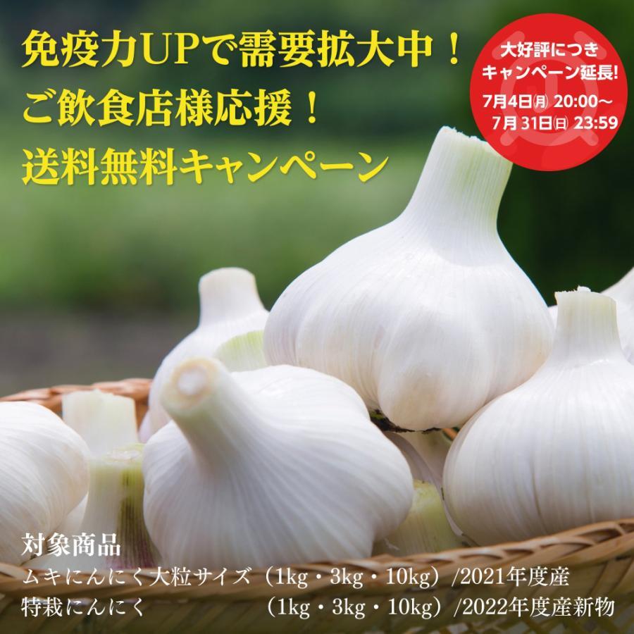 冷蔵 中国産 ムキにんにく1kg×10パック shougakoubou 02