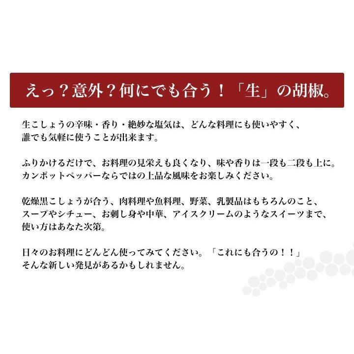 カンポット・ペッパー 生胡椒 40g 1袋 ゆうパケット送料無料 shougakoubou 05