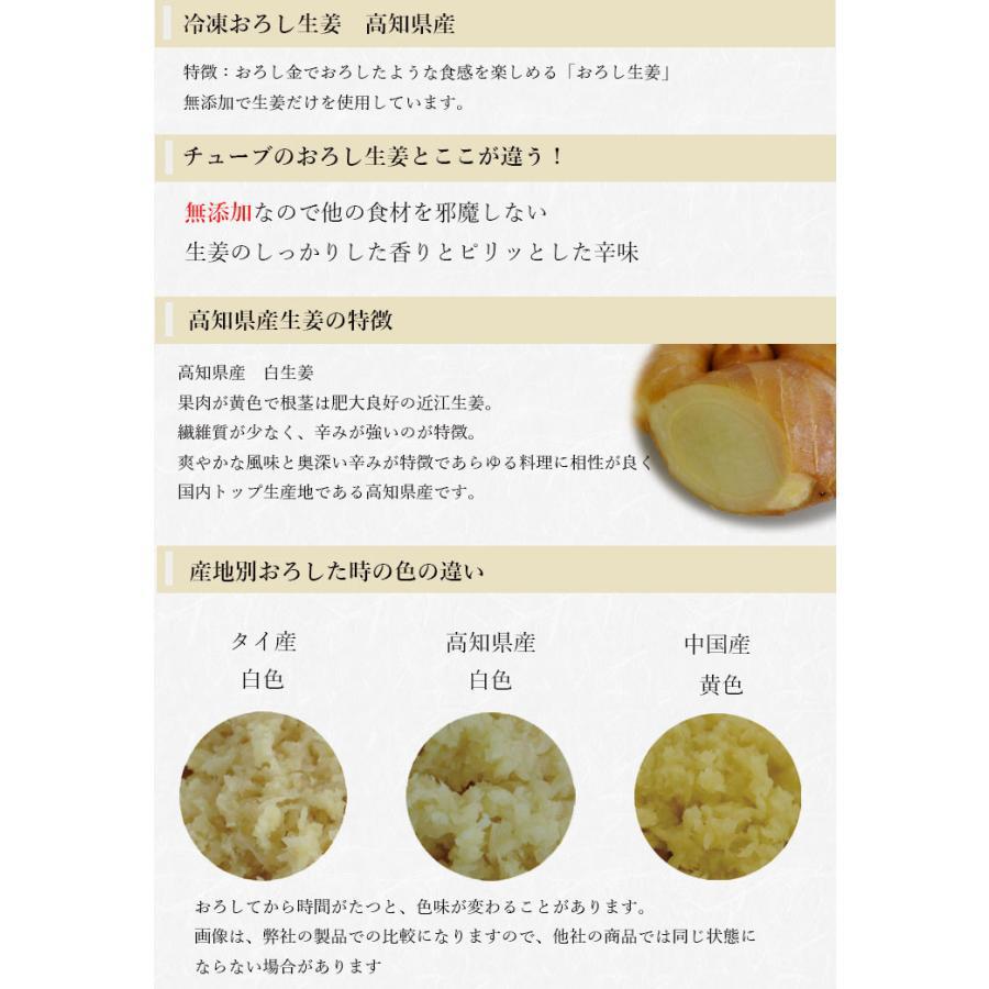 【冷凍】おろし生姜 160g×10 高知県産【 一次加工品】 shougakoubou 02