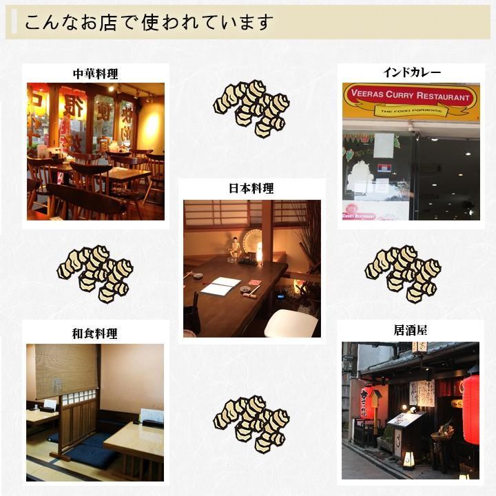 【冷凍】おろし生姜 160g×10 高知県産【 一次加工品】 shougakoubou 03