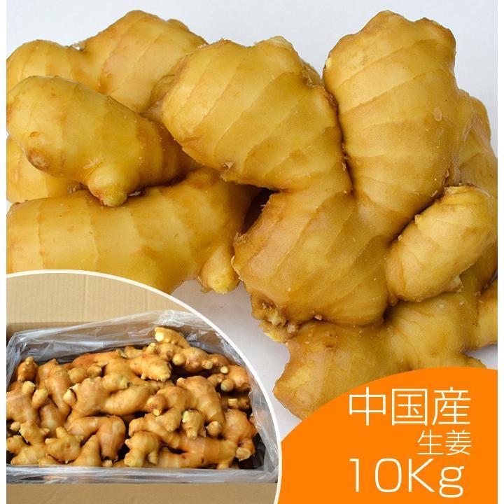 食用 中国産 黄金生姜 10kg(近江生姜 黄色) shougakoubou