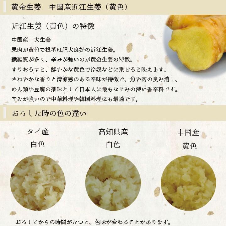 食用 中国産 黄金生姜 10kg(近江生姜 黄色) shougakoubou 02