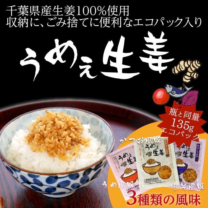 うめぇ生姜エコパック(鰹しそ梅)135g 3種セット ゆうパケット送料無料|shougakoubou