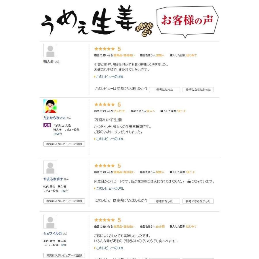 うめぇ生姜エコパック(鰹しそ梅)135g 3種セット ゆうパケット送料無料|shougakoubou|05