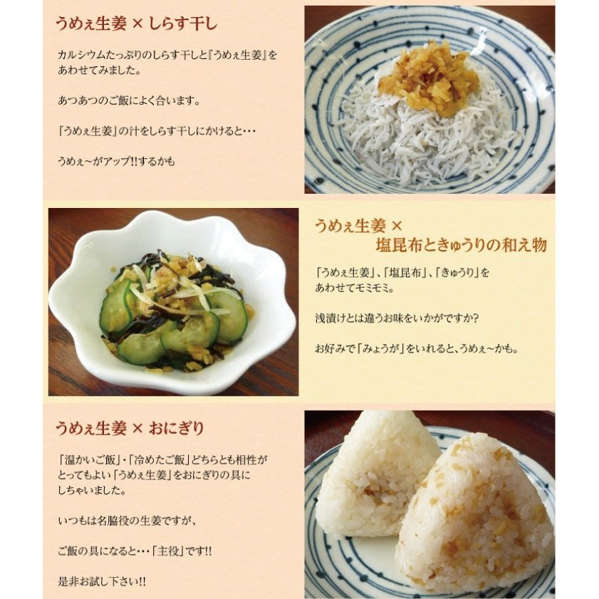 うめぇ生姜エコパック(鰹しそ梅)135g 3種セット ゆうパケット送料無料|shougakoubou|07