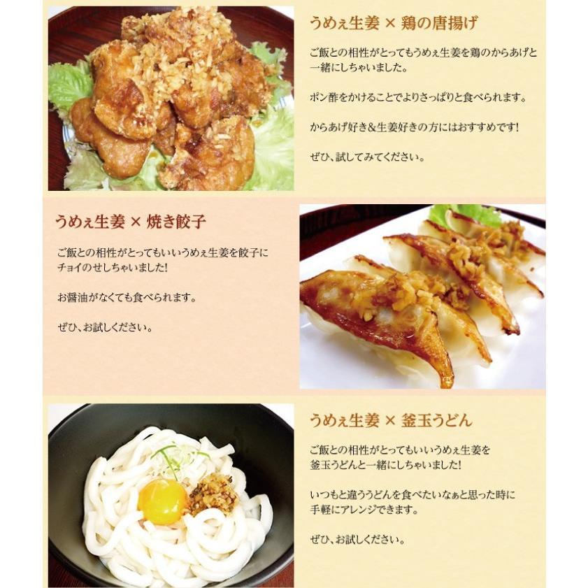 うめぇ生姜エコパック(鰹しそ梅)135g 3種セット ゆうパケット送料無料|shougakoubou|08