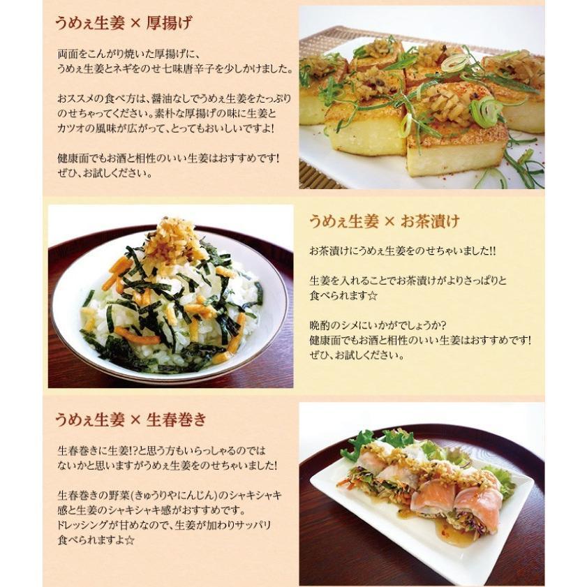 うめぇ生姜エコパック(鰹しそ梅)135g 3種セット ゆうパケット送料無料|shougakoubou|09
