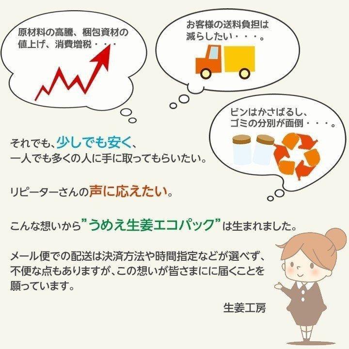 うめぇ生姜エコパック(鰹しそ梅)135g 3種セット ゆうパケット送料無料|shougakoubou|10