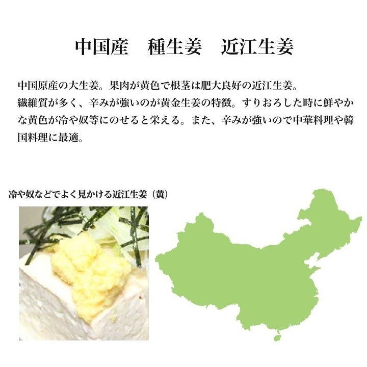 中国産 近江生姜(黄)10kg【種生姜】|shougakoubou|05