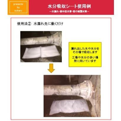あれば便利 【スバル 吸水土のう 水分吸収シート 3L用 10枚】|showa-shokai|09