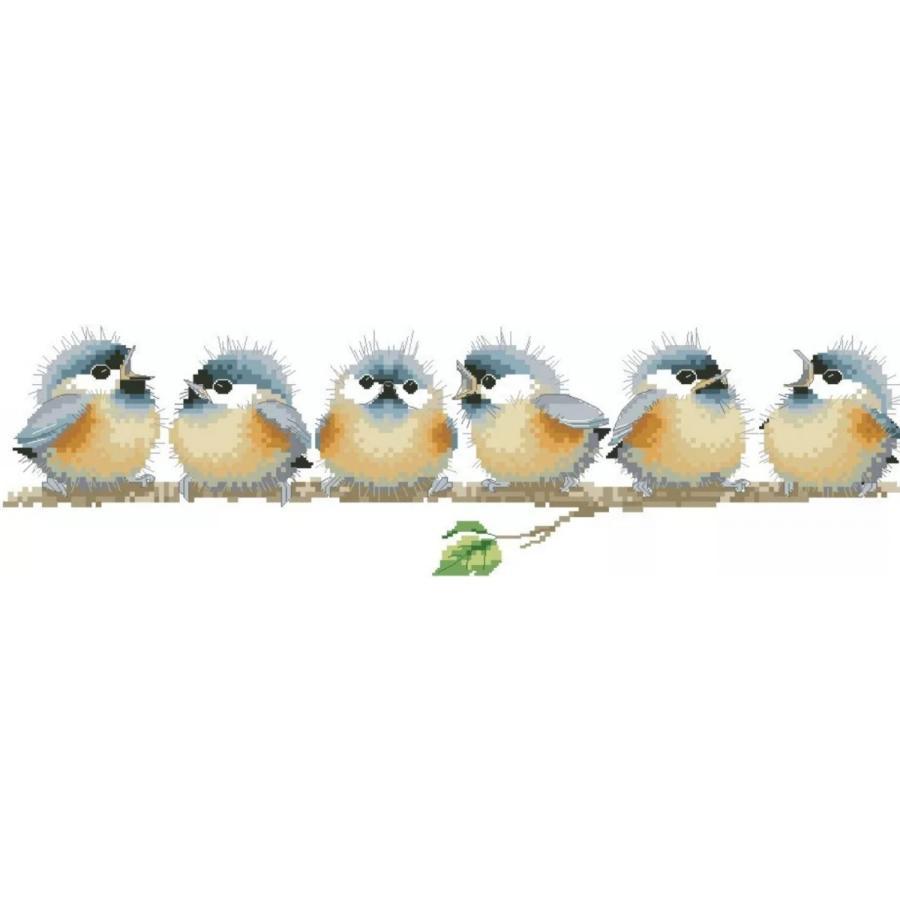 クロスステッチキット 小鳥のコーラス 幸せの青い鳥 16カウント 送料無料 安心と信頼 限定タイムセール 初級 手芸セット 中級