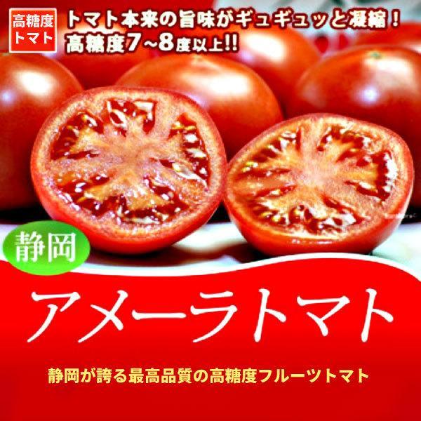 ギフトに最適! 高糖度トマト アメーラ フルーツトマト 15玉から18玉入り 送料無料|shunsaiya-store|02