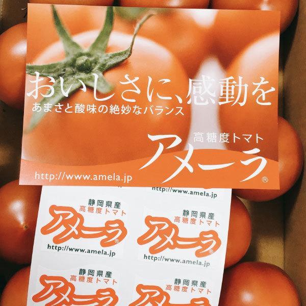 ギフトに最適! 高糖度トマト アメーラ フルーツトマト 15玉から18玉入り 送料無料|shunsaiya-store|04