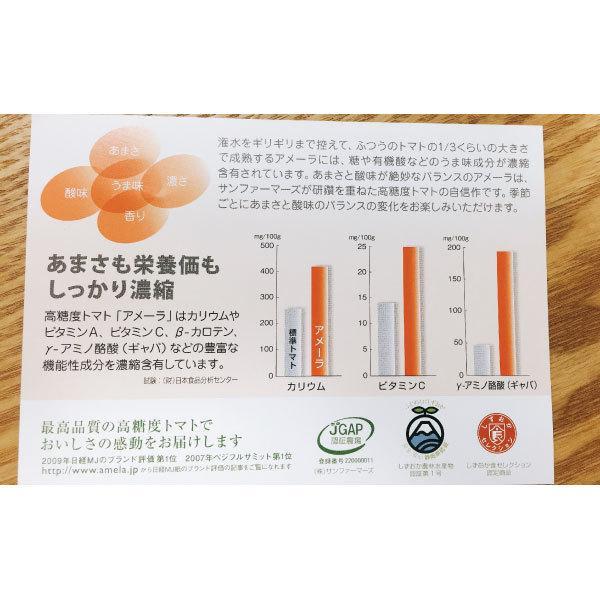 ギフトに最適! 高糖度トマト アメーラ フルーツトマト 15玉から18玉入り 送料無料|shunsaiya-store|06