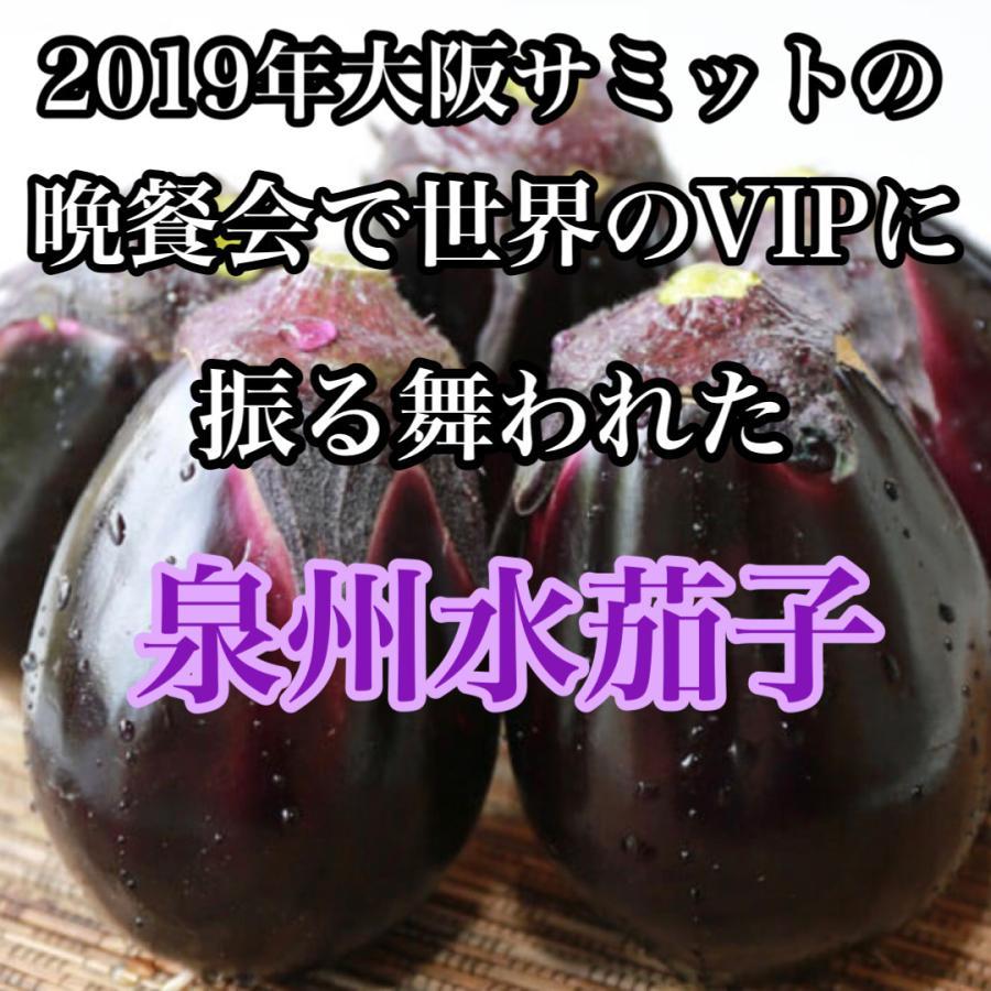 なす ナス 祝開店大放出セール開催中 茄子 大阪特産 捧呈 送料無料 贈答用にも 泉州水茄子A品20個入
