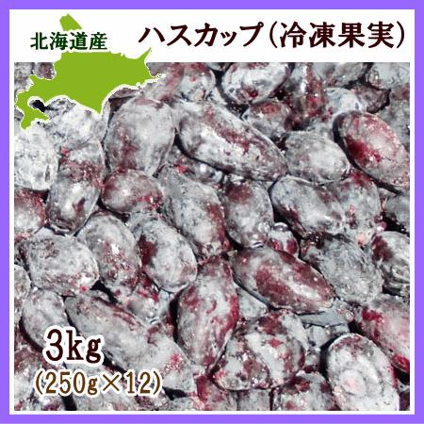 ハスカップ 冷凍果実 本日限定 3Kg 北海道産 商い 250g×12