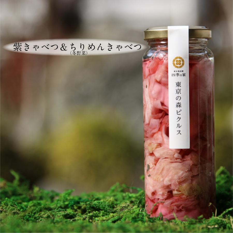 ピクルス 東京の森ピクルス きゃべつ セール 紫きゃべつ 東京都産 早割クーポン 固形量100g 国産 190g入り