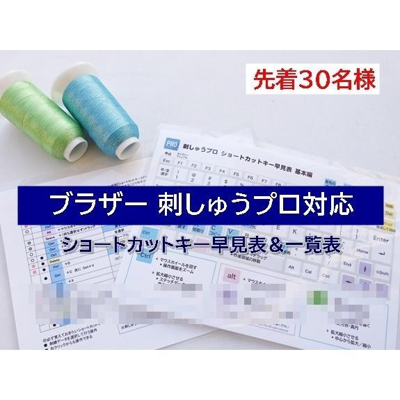 ブラザー PC刺しゅうデータ作成ソフトウェア 刺しゅうPRO 11 brother 刺繍プロ 刺しゅうプロ11|sinsengumi-goods|02