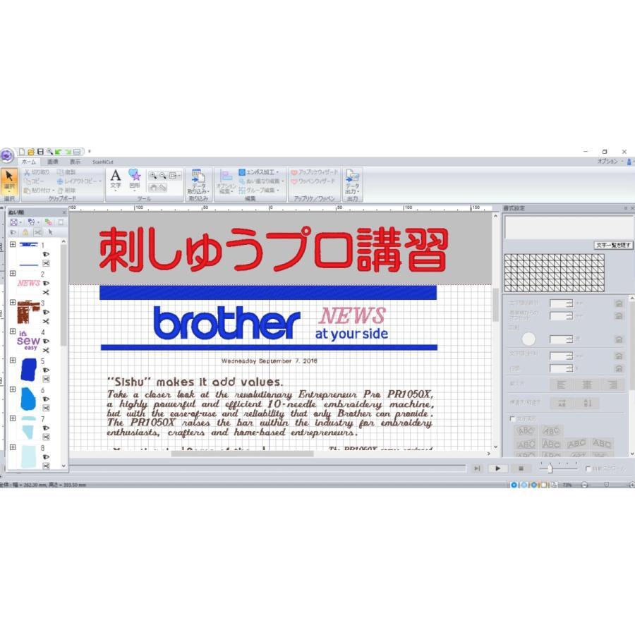 ブラザー 刺しゅうPRO 講習 刺繍ミシン 教室 個人指導 初心者 刺繍プロ 10 11 オンライン|sinsengumi-goods