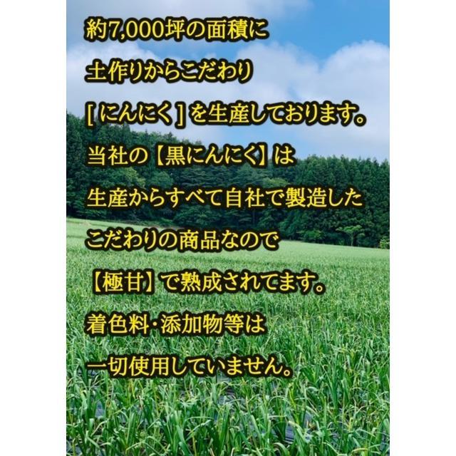 青森県産 熟成 黒にんにく お試しパック 2週間分 送料無料 ワンコイン|skgm412|03