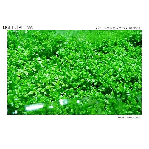 植物育成LEDライト LIGHT STAFF VA(ライトスタッフ バリアブルアングル) slow-lifes 09