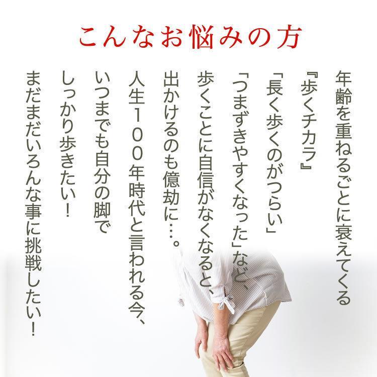 健脚自慢 歩こうよ 足 歩行 筋力 脚 丈夫な骨 大豆イソフラボン ブラックジンジャー 機能性表示食品|smcknekou|02