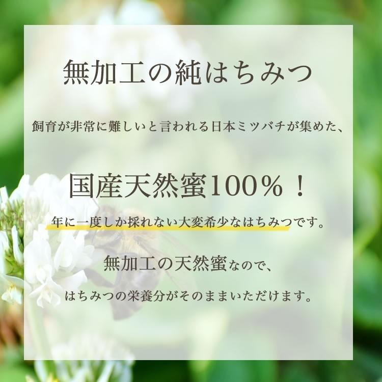 日本ミツバチの純はちみつ 100g 国産はちみつ ハチミツ 日本ミツバチ smcknekou 02
