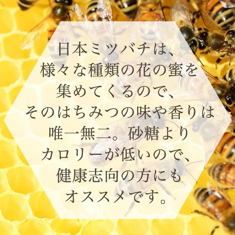 日本ミツバチの純はちみつ 100g 国産はちみつ ハチミツ 日本ミツバチ smcknekou 04
