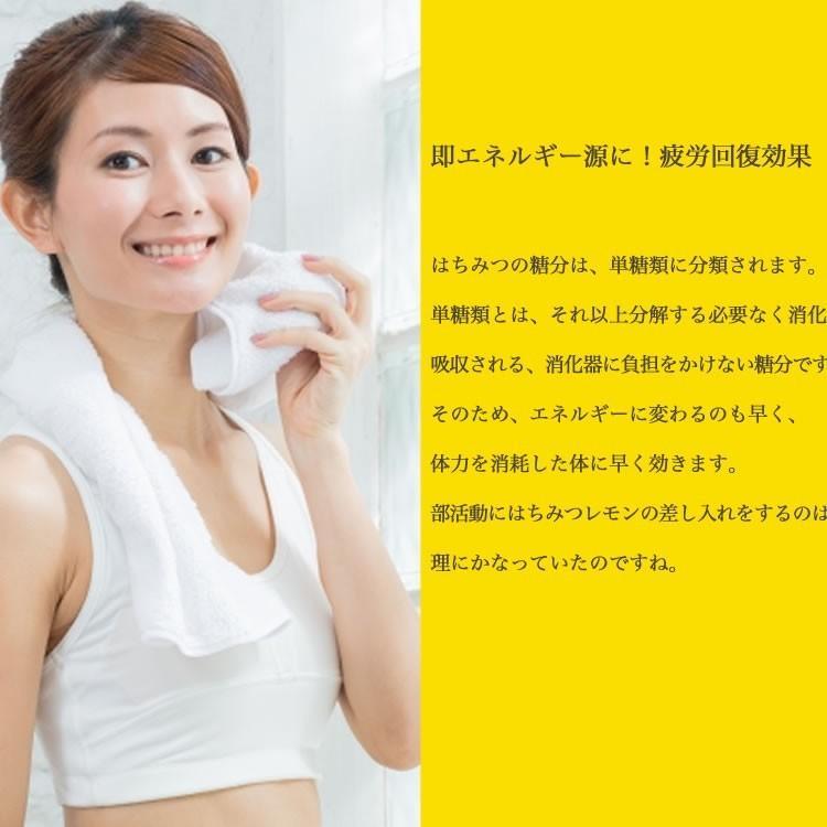 日本ミツバチの純はちみつ 100g 国産はちみつ ハチミツ 日本ミツバチ smcknekou 07