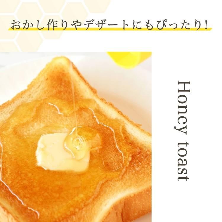 日本ミツバチの純はちみつ 100g 国産はちみつ ハチミツ 日本ミツバチ smcknekou 08