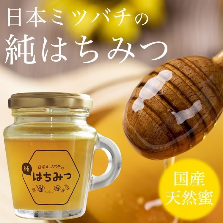 日本ミツバチの純はちみつ 100g 国産はちみつ ハチミツ 日本ミツバチ smcknekou 10