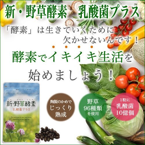 新・野草酵素 乳酸菌プラス(20粒入り) smcknekou