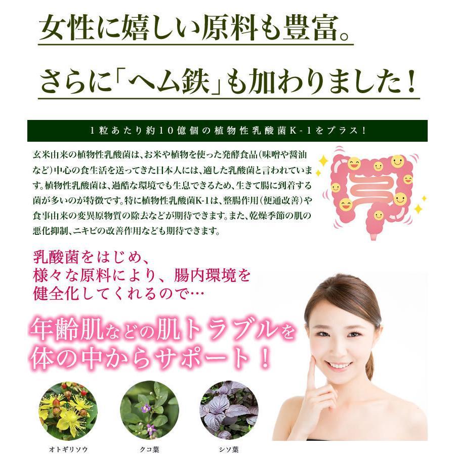 新・野草酵素 乳酸菌プラス(20粒入り) smcknekou 04