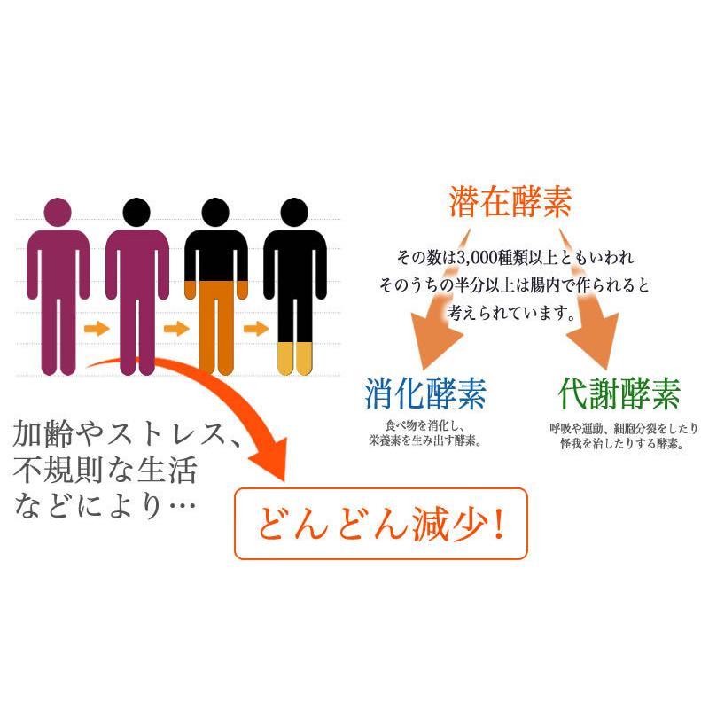 新・野草酵素 乳酸菌プラス(20粒入り) smcknekou 05