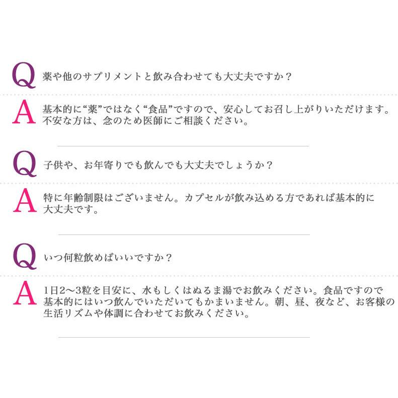 新・野草酵素 乳酸菌プラス(20粒入り) smcknekou 06