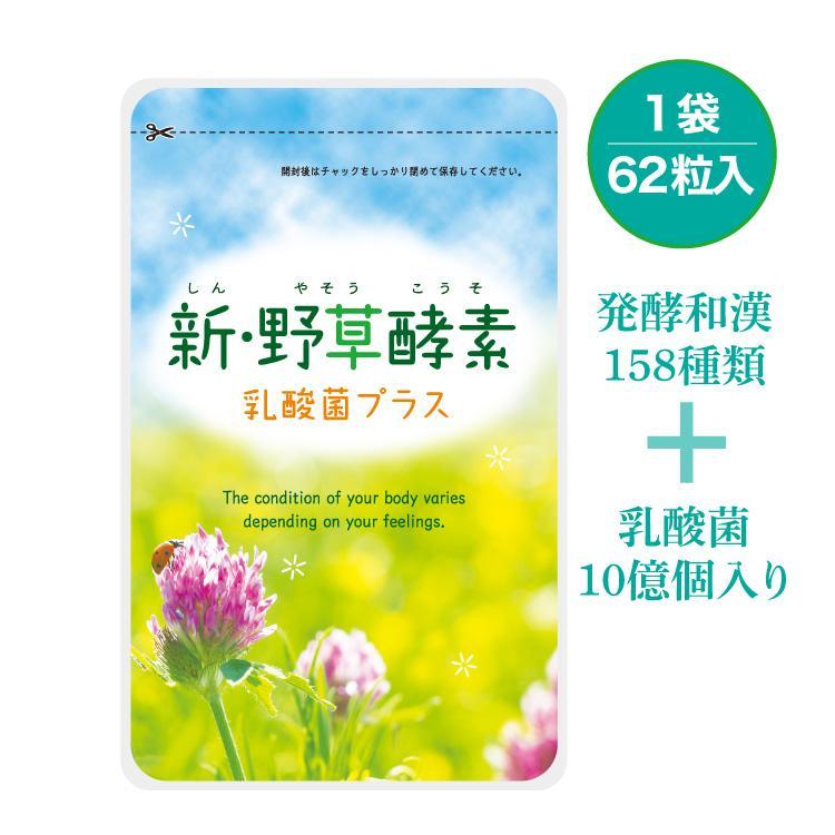 新・野草酵素乳酸菌プラス 酵素 乳酸菌 ヘム鉄 サプリメント|smcknekou