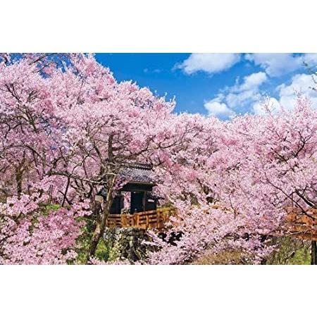 1000ピース ジグソーパズル 桜咲く高遠城址公園 長野 めざせパズルの達人 (50x75cm)【並行輸入品】
