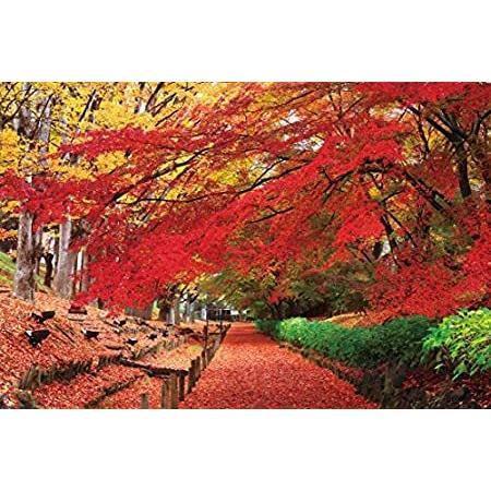 2016ピース ジグソーパズル パズルの超達人 紅葉の上田城跡公園―長野(50x75cm)【並行輸入品】