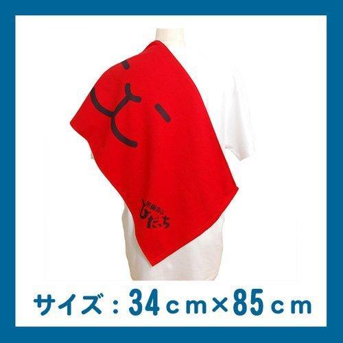 飛騨高山のゆるキャラ(R) ひだっち ガーゼタオル 2種セット smilehometen 02