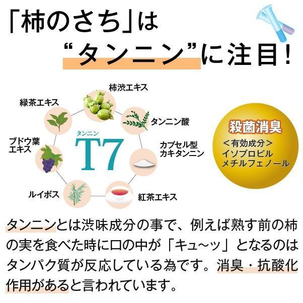 柿のさち KnS 薬用柿渋ボディソープ 詰替パウチ|soapmax|02
